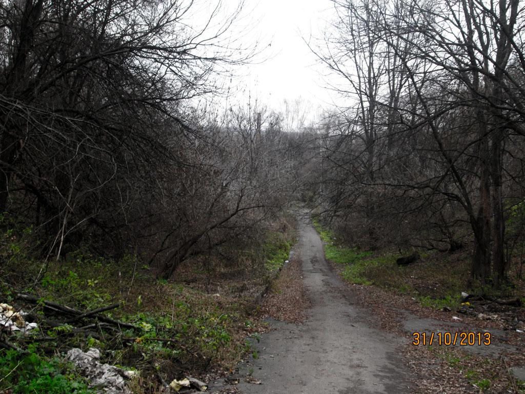 road to narkodispanser
